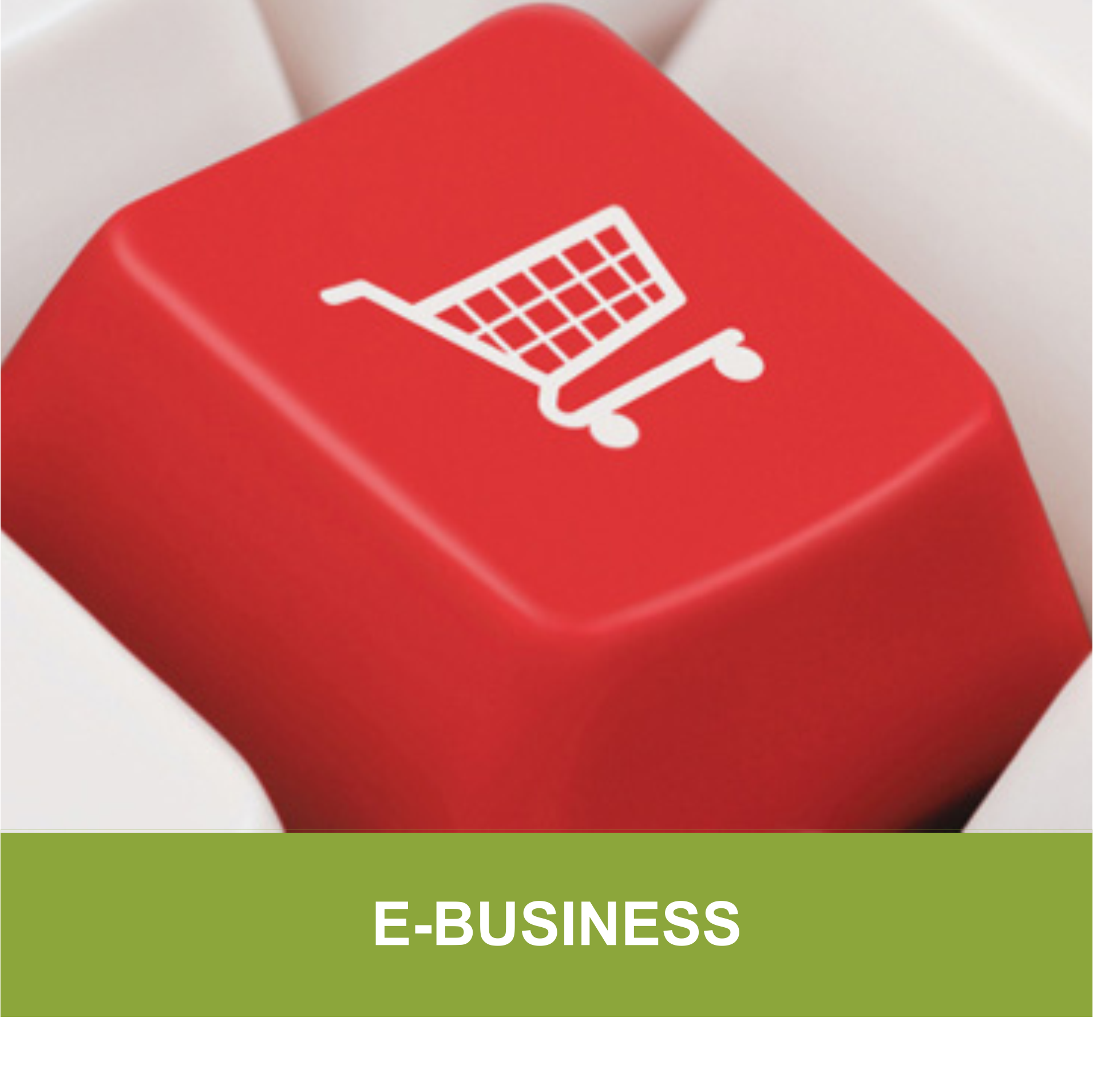 Questions to Ask Before Choosing an Online Store Builder For Your eCommerce Business