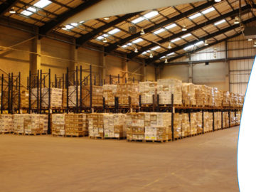 Reviewing The Benefits of Pallet Recycling